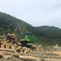 Forest Management Image #2